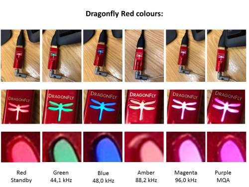 Dragonfly_colours